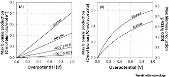 a gibbs free energy based assessment of microbial electrocatalysis