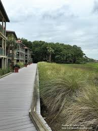 visit disney u0027s hilton head island resort for a little vacation