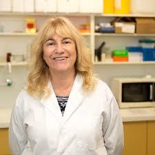 associate professor sally mcfadden staff profile the