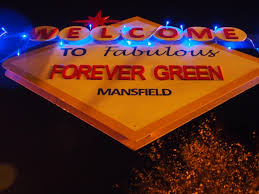 forever green is christmas party and office party venue in