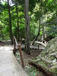 cement stairs and dry branch railings picture of salto de sorao
