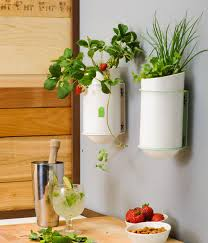 kitchen decorating ideas wall kitchen herb planter indoor herb planter eatwell101