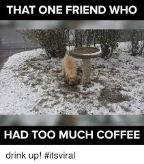 Too Much Coffee Meme - 25 best memes about too much coffee too much coffee memes