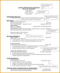 Resume 10 Key by Download Examples Of Chronological Resumes Haadyaooverbayresort Com