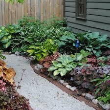 giardini rocciosi in ombra giardino in ombra 1 vivaio un quadrato di giardino