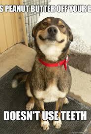 Dog Teeth Meme - licks peanut butter off your balls doesn t use teeth good dog greg