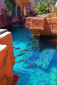 95 best atlantis images on pinterest atlantis lost city and