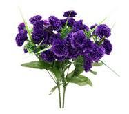 Purple Carnations 21 Purple Carnations Sk357839 20 00tt Almyuel From Floor