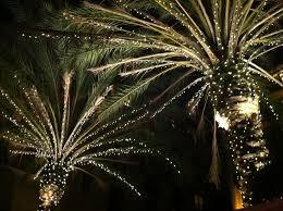 beverly hills christmas lights 25 best white christmas lights images on pinterest white christmas