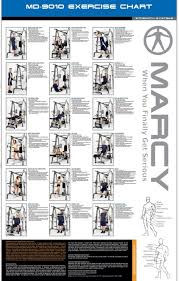 Home Gym Weight Bench Creative Weight Bench Exercises Poster And Amazing Ideas Of 25