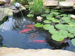 pretty and small backyard fish pond ideas at decor landscape