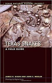 english pattern snake guides texas snakes a field guide texas natural history guidestm james