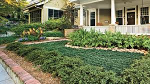 florida gardening ideas easy no mow lawns southern living