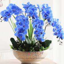 blue orchids diy flower arrangment blue orchids with leaves real touch flower