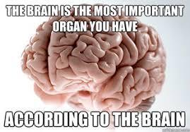 Neuroscience Meme - pursuing neuroscience memes