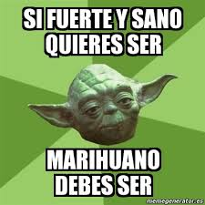 Memes De Marihuanos - meme yoda si fuerte y sano quieres ser marihuano debes ser 565028