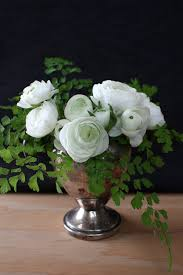 Japanese Language Of Flowers - 41 best language of flowers images on pinterest language of