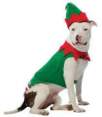 cute dog christmas wallpapers christmas pitbull wallpaper wallpapersafari