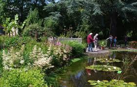 Botanic Gardens Uk Visiting The Garden Botanic Garden Of Bristol