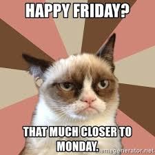 Grumpy Cat Meme I Had Fun Once - grumpy cat friday meme cat best of the funny meme
