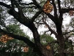 grapevine balls grapevine balls and unique decoration