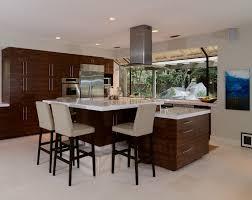 sleek modern kitchen kerrie kelly design lab sleek modern renovation kerrie kelly