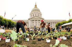 Urban Gardens San Francisco - nyt urban agriculture u2014 city farmer news