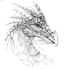 hd wallpapers dragon face coloring wds eiftcom press