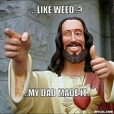 Funny Memes About Weed - 56 best weed images on pinterest grass killing weeds and weed