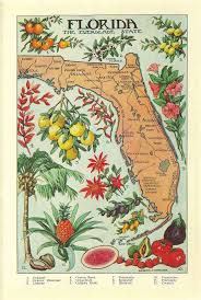 Daytona Florida Map by 86 Best Vintage Sunshine State Images On Pinterest Vintage