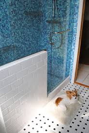 Bathrooms With Showers Only Small Bathroom Ideas With Shower Only Blue New On Excellent