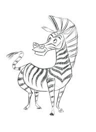 articles baby zebra coloring pictures tag zebra coloring