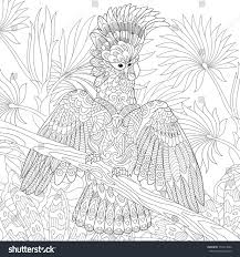 coloring page australian cockatoo parrot tropical stock vector