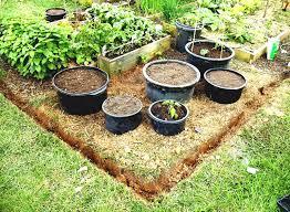 small vegetable garden design garden design ideas