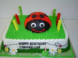 bug cakes 1 bug cakes for toddlers products south africa 1 bug