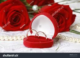 beautiful rose rings images Wedding rings red box against beautiful stock photo 65624938 jpg
