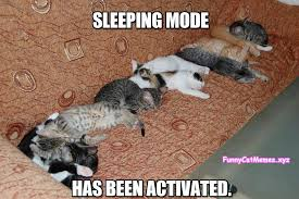 Sleepy Cat Meme - sleeping mode has been activated funny cat meme