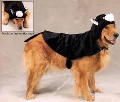 Dog Costume Halloween 33 Pet Dog Halloween Costumes Pet Holiday Costumes Images