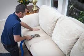 Upholstery Fabric St Louis Upholstery Cleaning Pet Odor Removal Cat Or Dog Urine