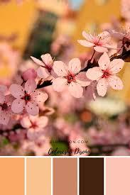 canva color palette ideas ideas para tus plantillas en canva color pallets pallets and