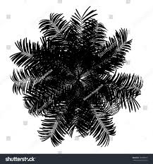 top view silhouette areca palm tree stock illustration 160368812