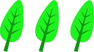 three green leaves logo free clip art