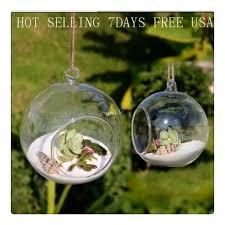aliexpress com buy 8pieces dia 8cm hanging round glass air plant
