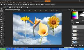 paintshop pro photo ultimate x4 x5 x6 x7 x8 x9 ultimate workspace