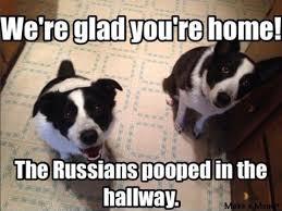 Political Memes - best political memes of 2016