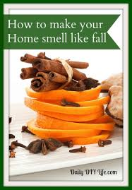 fall scents 15 diy crafts to bring fall scents to your home shelterness