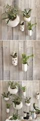 Wall Plant Holders Best 25 Ceramic Wall Planters Ideas On Pinterest Wall Pockets