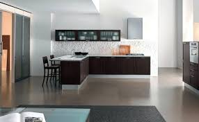 Glass Door Kitchen Wall Cabinets Frosted Glass Door Kitchen Cabinets Simple Kitchen Design With L