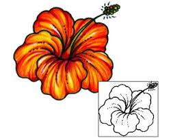tattoo johnny hibiscus tattoos
