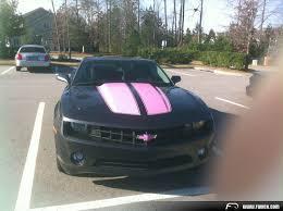 black camaro with pink stripes pink stripes anyone anyone moderncamaro com 5th generation